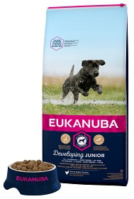 Bild på Eukanuba Dog Junior Large 15 kg