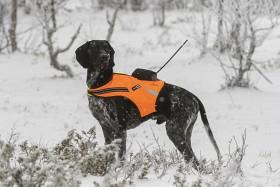 Bild på Tracker Koiraliivi Kardog Raipe, Artemis & Supra-tutkalle