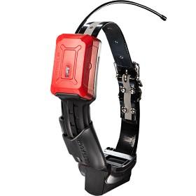 Bild på Ultracom R10 Hybrid -koiratutka